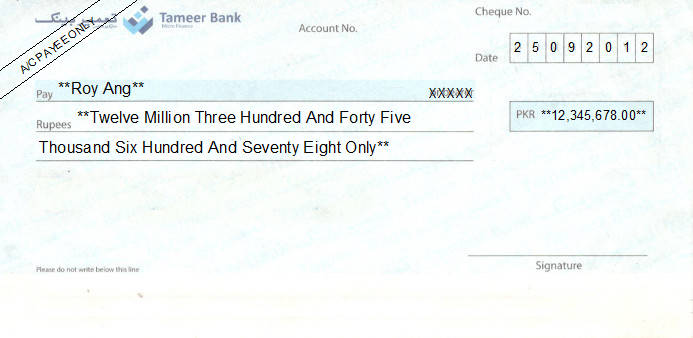 Printed Cheque of Tameer Bank in Pakistan